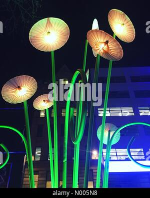 London, UK. 14th Jan, 2016. Garden of Light by TILT for the Lumiere London exhibition. Credit:  Jessica Gwynne/StockimoNews/Alamy - Stock Photo