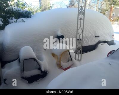 Fairfax, Virginia, USA. 24th January, 2016.  A Jeep Grand Cherokee and children's toys are covered in snow following - Stock Photo