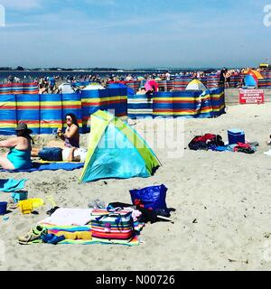 W Strand, West Wittering, Chichester, West Sussex, UK. 08th May, 2016. UK Weather 8th May 2016: Anticyclonic conditions - Stock Photo