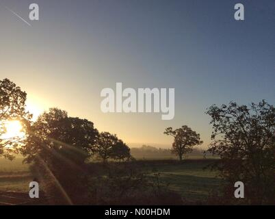 UK Weather: Early morning sun shines through the mist over fields in South Staffordshire. - Stock Photo
