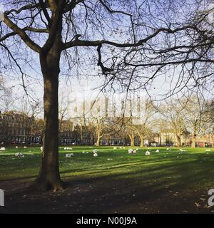 London, UK. 12th Dec, 2017. Post snowman making scene in Highbury Fields, Islington, London Credit: Charlotte Machin/StockimoNews/Alamy - Stock Photo