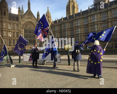 London, UK. 30th January, 2018. Brexit means Brexit campaigners outside Houses of Parliament. Credit: Expo Photo/StockimoNews/Alamy - Stock Photo