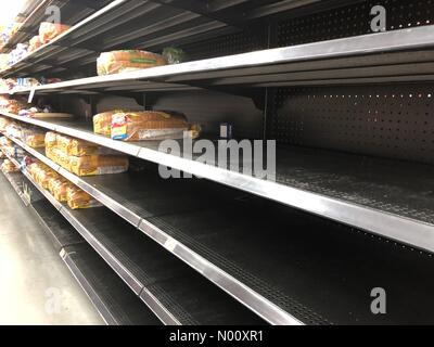 Gulf Breeze, Florida, USA. 9th October, 2018. GULF BREEZE, FLORIDA- Shelves on the bread aisle were empty at Wal-Mart Neighborhood Market, Oct. 9 in Gulf Breeze, Fla. Residents packed stores seeking supplies before Hurricane Michael. Credit: Carmen Sisson/StockimoNews/Alamy Live News - Stock Photo