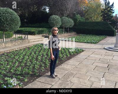 London, UK. 13th October 2018. Sunny Saturday afternoon in Holland Park London 13 October 2018 Credit: JOHNNY ARMSTEAD/StockimoNews/Alamy Live News - Stock Photo