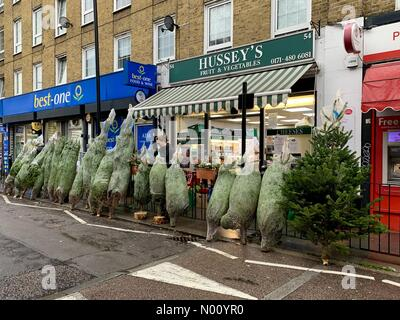LONDON, UK. 1st December 2018. Christmas trees for sale in the street outside Hussey's greengrocers in Wapping Lane, east London. Credit: Vickie Flores/StockimoNews/Alamy Live News Credit: Vickie Flores/StockimoNews/Alamy Live News - Stock Photo