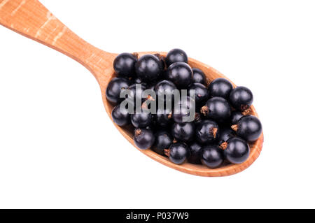 Wooden spoon full of fresh black currants close-up on a white background - Stock Photo