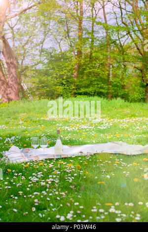 Picnic on the green grass. Park in spring. Good vacation. Place for text. - Stock Photo