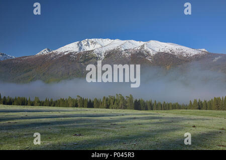 Morning mist, Kanas Lake National Park, Xinjiang, China - Stock Photo