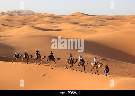 Tourists Enjoying Camel Trek In Erg Chebbi Dunes, Merzouga, Morocco - Stock Photo