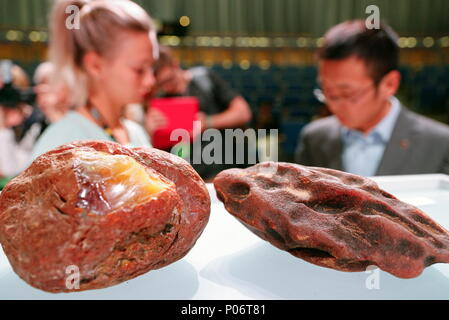 Svetlogorsk, Russia. 08th June, 2018. KALININGRAD REGION, RUSSIA - JUNE 8, 2018: Lots on display at an auction selling unique amber nuggets weighing over 1kg as part of the 2018 Amberforum, an international economic forum of amber industry held in the town of Svetlogorsk. Vitaly Nevar/TASS Credit: ITAR-TASS News Agency/Alamy Live News - Stock Photo