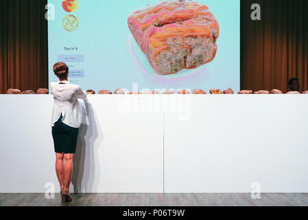 Svetlogorsk, Russia. 08th June, 2018. KALININGRAD REGION, RUSSIA - JUNE 8, 2018: An auction selling unique amber nuggets weighing over 1kg as part of the 2018 Amberforum, an international economic forum of amber industry held in the town of Svetlogorsk. Vitaly Nevar/TASS Credit: ITAR-TASS News Agency/Alamy Live News - Stock Photo