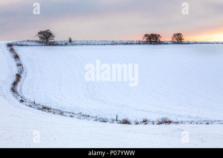 Fields on the snow-covered Downs in Wiltshire. - Stock Photo