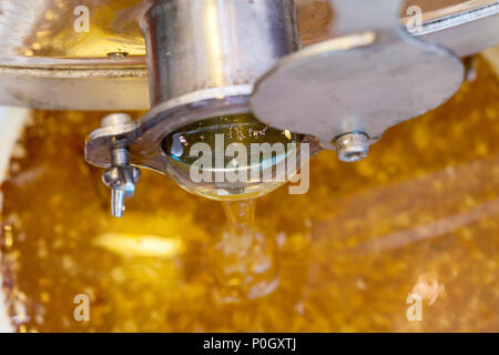Close up picture of fresh dripping organic honey - Stock Photo