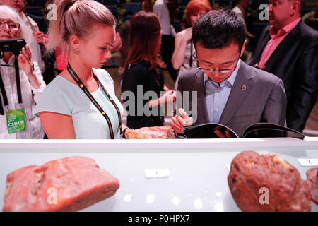 Svetlogorsk, Russia. 08th June, 2018. KALININGRAD REGION, RUSSIA - JUNE 8, 2018: An auction selling unique amber nuggets weighing over 1kg at the 2018 Amberforum, an international economic forum of the amber industry in the town of Svetlogorsk, Kaliningrad Region, Russia. Vitaly Nevar/TASS Credit: ITAR-TASS News Agency/Alamy Live News - Stock Photo