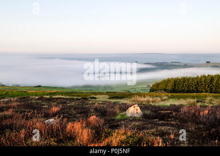 Teesdale, County Durham. Sunday 10th June 2018. UK Weather. It was a foggy start to the day in Teesdale, County Durham, however this is expected to clear to leave a largely dry and sunny day in prospect.  By late afternoon there is the potential for heavy thundery showers to develop.  David Forster/Alamy Live News - Stock Photo