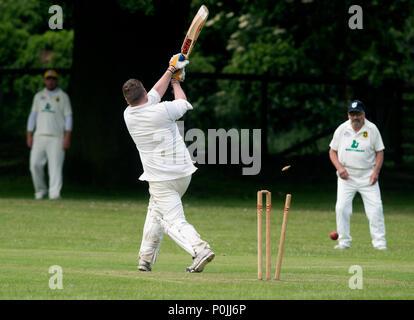 Village cricket at Claverdon, Warwickshire, England, UK - Stock Photo