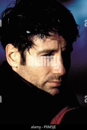 Original Film Title: X-FILES, THE.  English Title: X-FILES, THE.  Film Director: ROB BOWMAN.  Year: 1998.  Stars: DAVID DUCHOVNY. Credit: 20TH CENTURY FOX / Album - Stock Photo