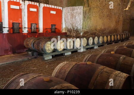 A troglodyte cave with old wooden wine barrels on display in the Loire Valley, France and old wine colorful containers - Stock Photo