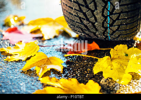 winter tire on a wet road with leaves, symbol - Stock Photo