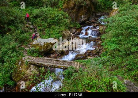 Small waterfall with stream at deep forest in Khopra, Nepal. - Stock Photo