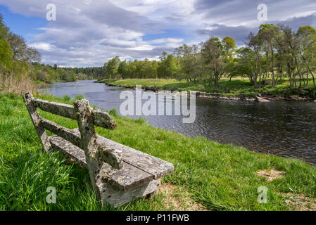 Old weathered wooden bench on riverbank along the river Spey in spring at Grantown-on-Spey, Highland, Moray, Scotland, UK - Stock Photo