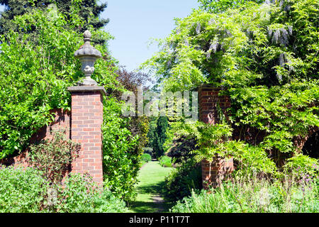 Path through gate in a walled garden, with cottage flowers, shrubs, conifer and leafy mature trees, on a sunny summer day in English countryside . - Stock Photo