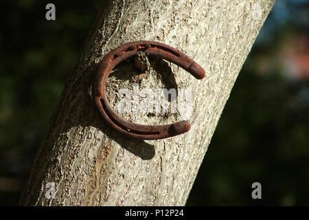 Old horseshoe hanging on nail - Stock Photo
