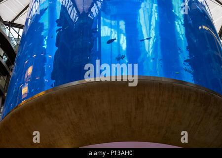 Berlin, Germany - April 5, 2017: Aquarium inside Radisson Hotel Sea Life in Berlin - Stock Photo