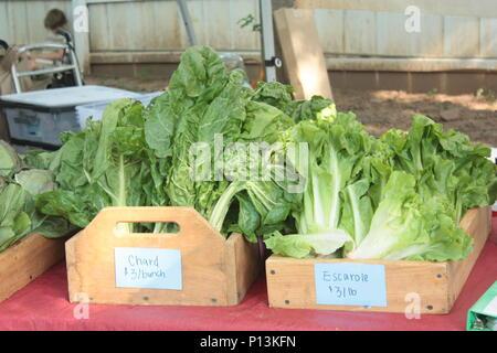 Farmers Market Offering - Stock Photo