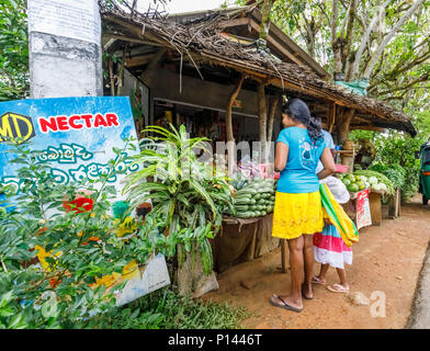 Sri Lankan woman and her daughter shopping for vegetables at a roadside stall selling local produce, Horagampita district, near Galle, Sri Lanka - Stock Photo
