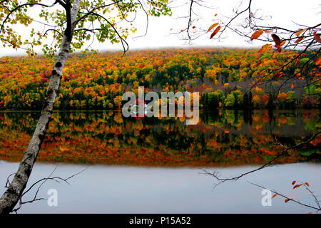 Bright red, orange and yellow leaves roll up a mountainside in a rural area by a lake - Stock Photo