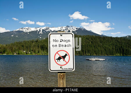 'No Dogs on Beach' sign posted at Alta Lake in Whistler, BC, Canada. - Stock Photo