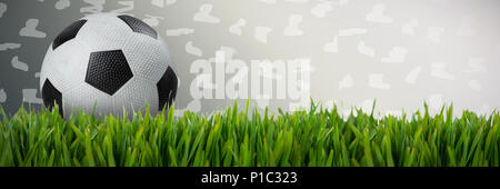 Composite image of black and white leather football - Stock Photo