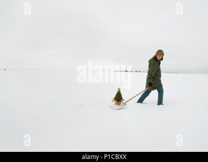 A person walking through the snow pulling a rosemary christmas tree on a snow shovel through a wintery landscape. - Stock Photo