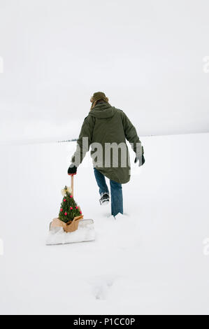 A person photographed from behind pulling a rosemary bush that is sitting on a snow shovel through the snow in a wintery landscape. - Stock Photo