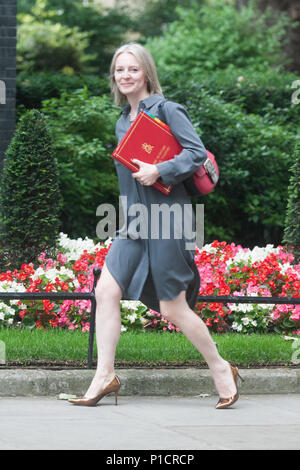 London UK. 12th June 2018. Elizabeth Truss MP Chief Secretary to the Treasuryarrives at Downing Street for the weekly cabinet meeting  on the day  MPs are set to start voting on amendments to the EU Withdrawal Bill put forward by the House of Lords Credit: amer ghazzal/Alamy Live News - Stock Photo