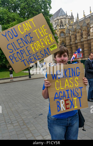 London, UK. 12th June 2018. Protesters continue their protests outside Parliament calling for an end to the process of leaving Europe with a 'Pies Not Lies' Remainathon during the parliamentary debate on the European Union (Withdrawal) Bill. The Stand of Defiance European Movement, SODEM, started by Steven Bray in September 2017 have continued to protest every day that MPs are in session. it that t Credit: Peter Marshall/Alamy Live News - Stock Photo