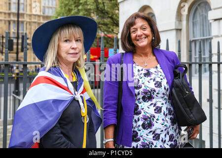 Westminster, London, UK, 12th June 2018. The Right Honourable The Baroness Altmann, Conservative (Tory) peer Ros Altman poses with an anti Brexit supporter. Anti-Brexit protesters from SODEM at the 'Stop Brexit' protest outside the Houses of Parliament. Credit: Imageplotter News and Sports/Alamy Live News - Stock Photo