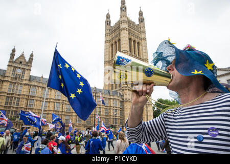 London, UK. 12th June, 2018. Pro-EU activists demonstrate opposite Parliament on the day of a House of Commons vote on amendments proposed by the House of Lords to the EU Withdrawal Bill. Credit: Mark Kerrison/Alamy Live News - Stock Photo