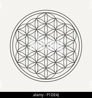 Flower of life mandala in outline style. Zen illustration, yoga background. EPS10 vector. - Stock Photo