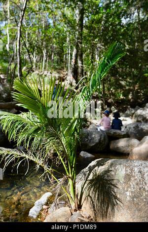 Children sitting on rocks in Rollingstone creek, Paluma Range National Park, Rollingstone QLD, Australia - Stock Photo