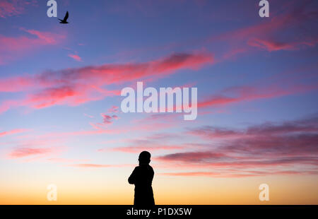 Rear view of woman silhouetted against colourful sunset as bird flies overhead: mental health, female depression, positive thinking... concept image - Stock Photo