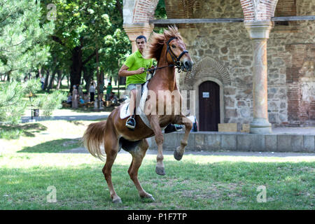 Nis, Serbia - June 10, 2018: Young horseman on jumping horse on meadow in nature. Sport and recreation concept - Stock Photo
