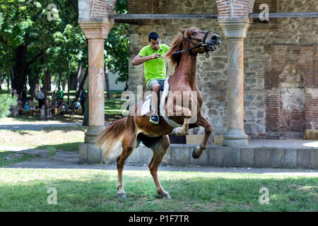 Nis, Serbia - June 10, 2018: Young Rider on brown jumping horse on meadow in nature. Sport and recreation concept - Stock Photo