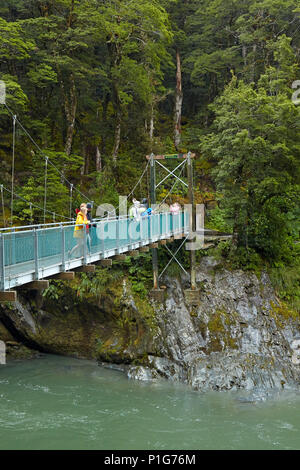 Tourists on footbridge over Blue River, Blue Pools, Mount Aspiring National Park, Haast Pass, near Makarora, Otago, South Island, New Zealand - Stock Photo