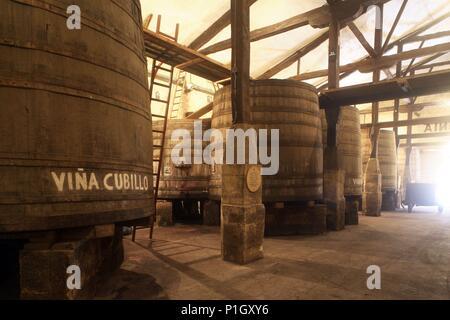 SPAIN - LA RIOJA - Rioja Alta (district). Haro; Bodegas López Heredia / Viña Tondonia; grandes toneles de roble. - Stock Photo