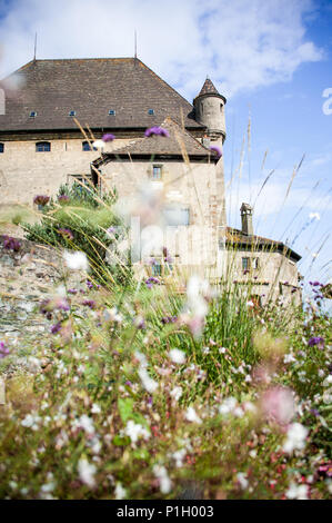 Yvoire, France. Pretty floral scene, partial view of historic castle with blurred foreground,against blue sky background - Stock Photo