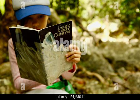 Young girl reads book on Australian gemstones in a forest, Paluma Range National Park, Rollingstone QLD, Australia - Stock Photo