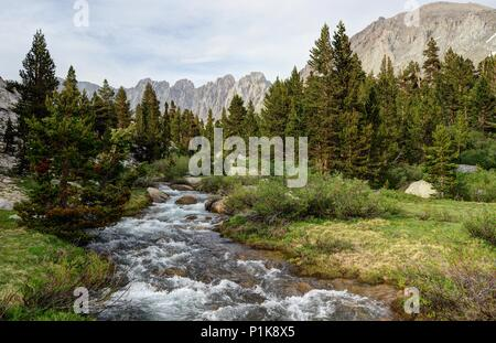 Rock Creek flowing Through the Miter Basin, Sequoia National Park, California, America, USA - Stock Photo