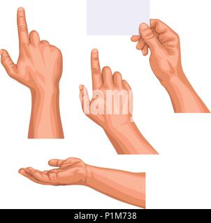 illustration of male hand set isolated in different poses isolated on white background - Stock Photo